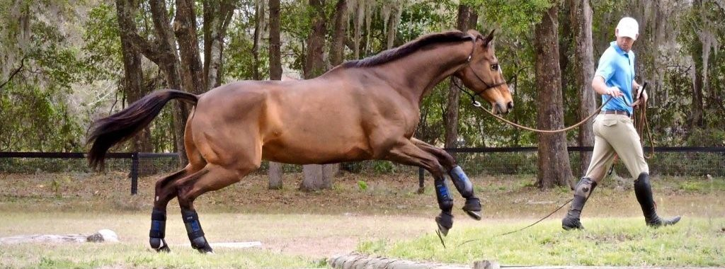 Increase Your Riding Performance with a Few Simple Exercises-2