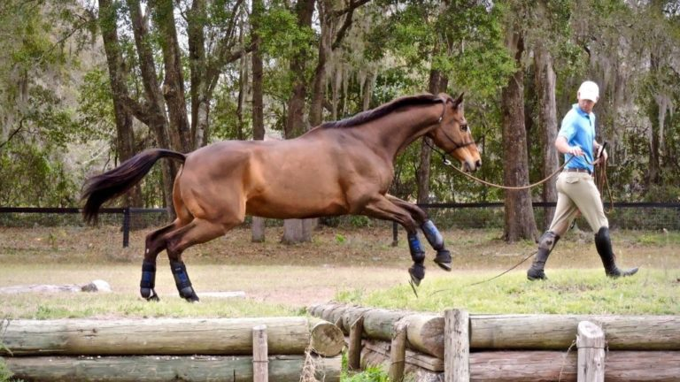 Increase Your Riding Performance with a Few Simple Exercises