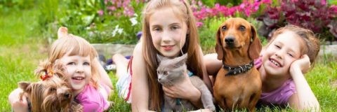 Teaching Your Child How to Handle Pets