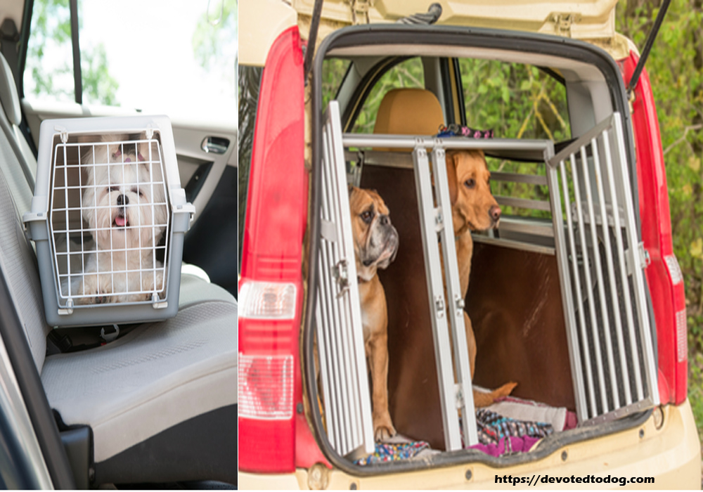 The Best Material Used in Making Pet Carriers