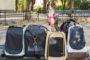 Is A Sherpa Pet Carrier Right For Your Travels?