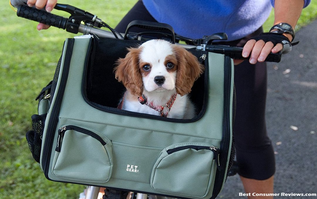 Practical Pet Carriers - Designer Quality at a Discount Price