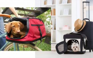 The Most Popular Types of Dog Carriers Reviewed