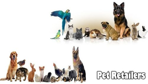 Shopping at On-line Pet Retailers