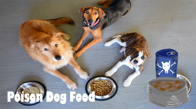 Poison Dog Food Remember – It truly is Even Worse Than You think