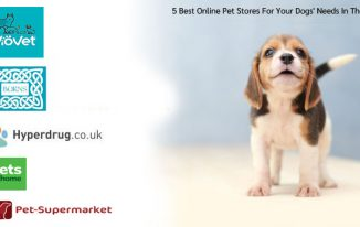 5 Best Online Pet Stores For Your Dogs' Needs In The Uk