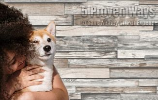 5 Proven Ways To Save Money On Pet Expenses
